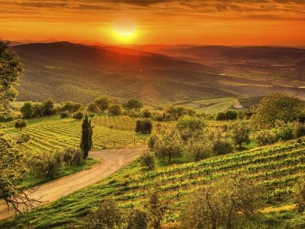 Tuscany sunset destination wedding - Julia Event